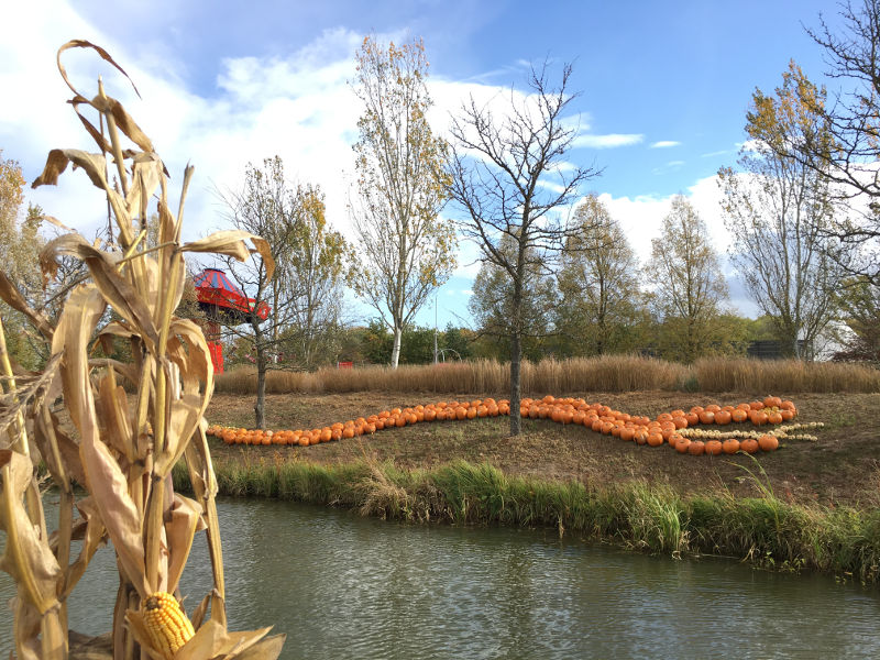 Halloween au Parc du Petit Prince - décors