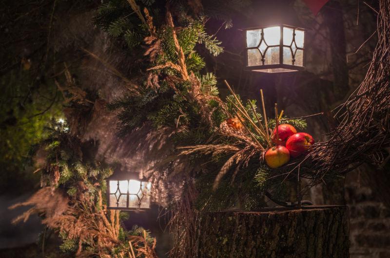 Rêves & veillées à l'Ecomusée d'Alsace | #mulhousexperience