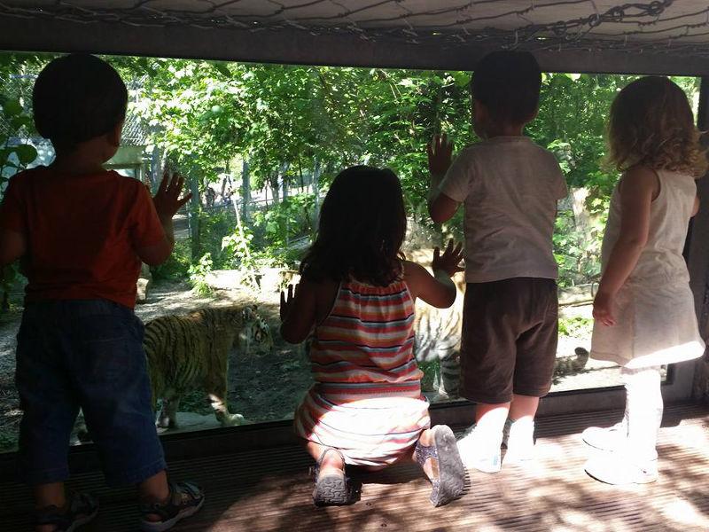 Top 5 activités en famille à Mulhouse Alsace - Parc zoologique et botanique