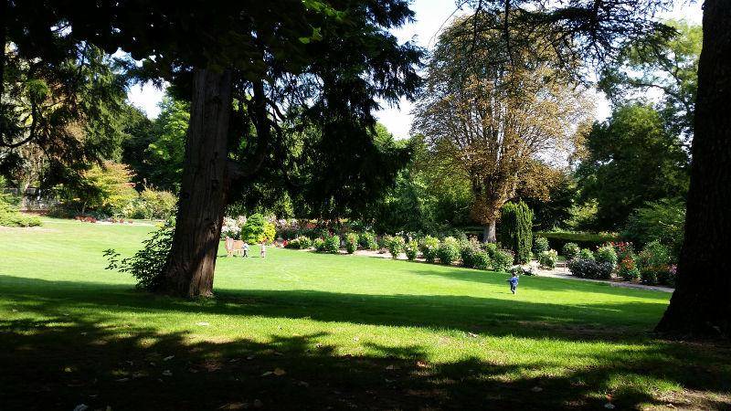 Top 5 des activités en famille à Mulhouse Alsace -