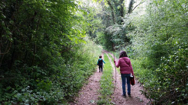 Sentier de la Mémoire Zillisheim-Flaxlanden | #mulhousexperience