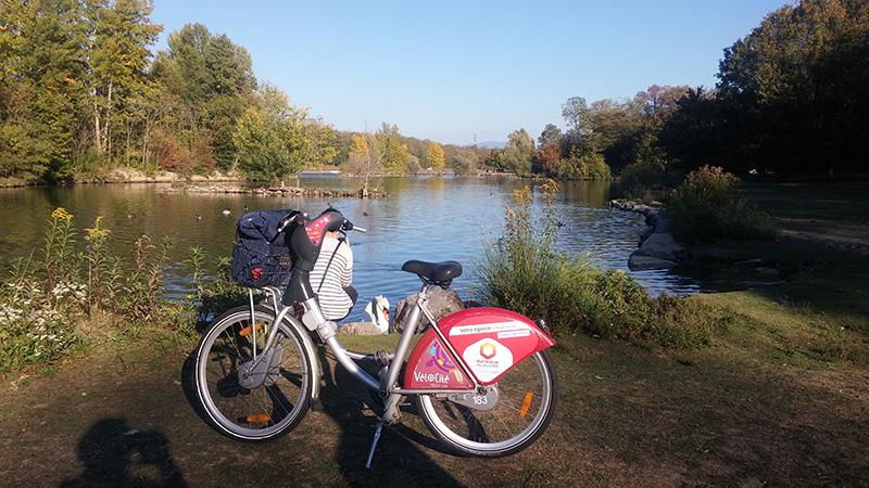 Faire du vélo à Mulhouse Alsace | Mulhousexperience