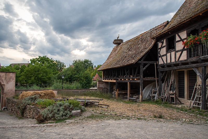 Coup de coeur #mulhousexperience | Nocturnes à l'Ecomusée | Mulhouse Alsace