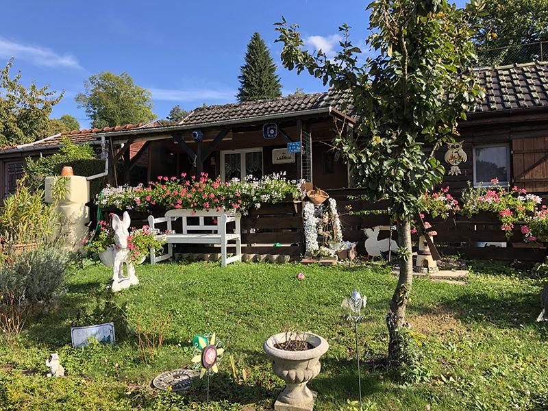 Coup de coeur #mulhousexperience | Balade dans le Rebberg | Mulhouse Alsace